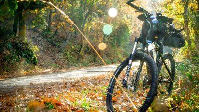 Photo of Wyprawy rowerowe – doskonały pomysł na aktywne wakacje