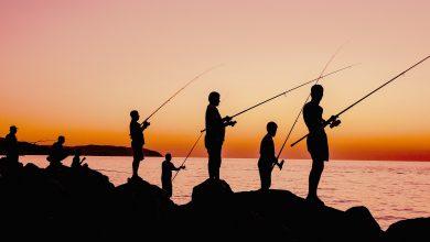 Photo of Idziemy na ryby – czyli wędkowanie dla początkujących